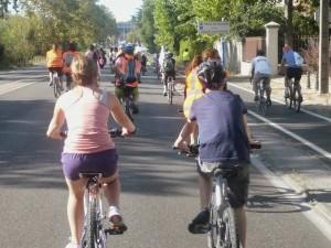 L'arrivée à Montpellier : la route de Nîmes aux vélos !!!